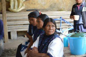 Programas para mujeres indígenas chiapas