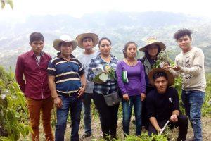 derecho al arraigo indígenas de chiapas