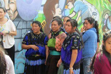 Cimich Mujeres Migrantes indígenas de chiapas